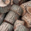 Училището в село Рабиша ще получи безплатно дърва за огрев
